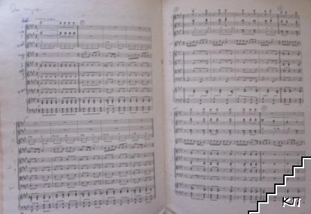 Концертино за гайда и народен оркестър (Допълнителна снимка 3)