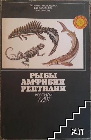Рыбы амфибии рептилии