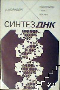 Синтез ДНК