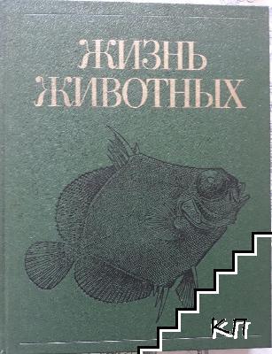 Жизнь животных. Том 4
