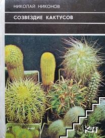 Созвездие кактусов