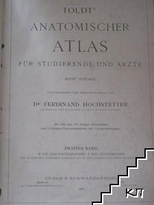 Toldts Anatomischer Atlas für Studierende und Ärzte. Band 2