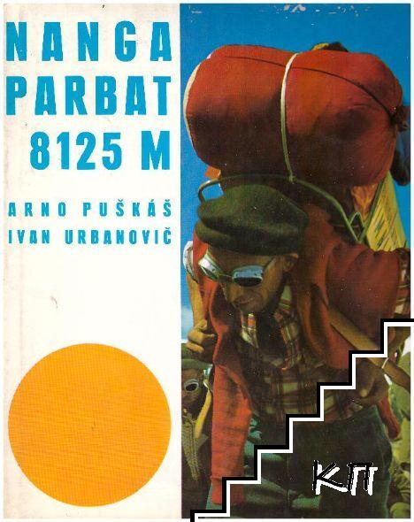 Nanga Parbat 8125 M