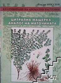 Култивиране на ароматни растения. Книга 2: Цитрална мащерка - аналог на маточината