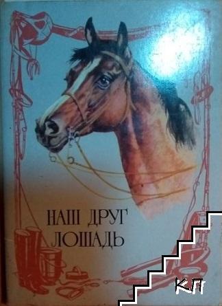 Наш друг лошадь. Комплект из 16 открыток