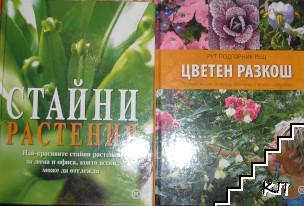 Стайни растения / Цветен разкош