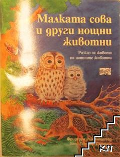 Малката сова и други нощни животни