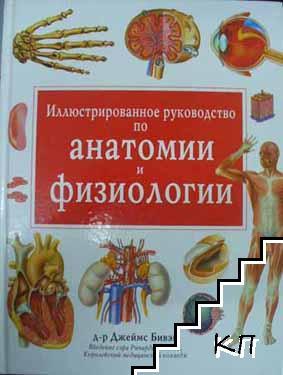 Иллюстрированное руководство по анатомии и физиологии