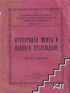 Културната мента и нейното отглеждане (Mentha Piperita)