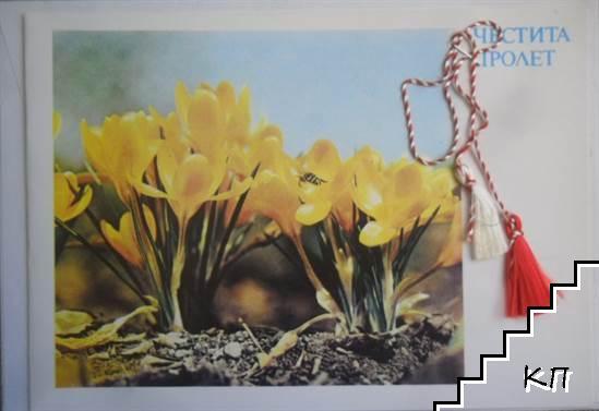 Честита Пролет! Двадесет и два жълти минзухара с търсеща пчела, мартеница, плик и целофан