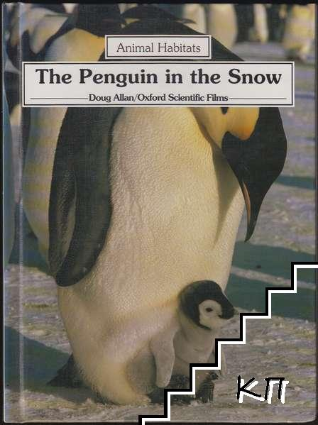 The Penguin In The Snow