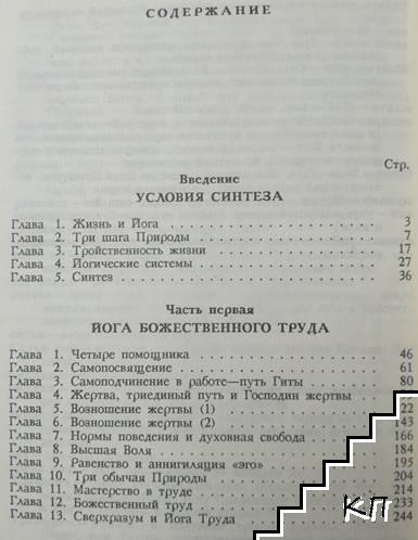 Синтез йоги. Книга 1 (Допълнителна снимка 1)