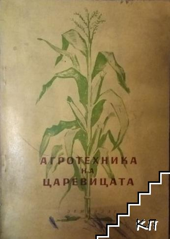 Агротехника на царевицата