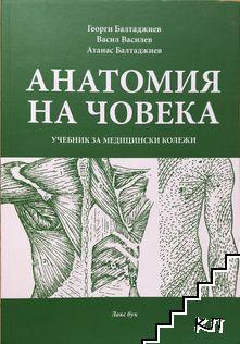 Анатомия на човека
