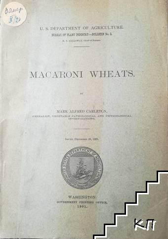 Macaroni wheats