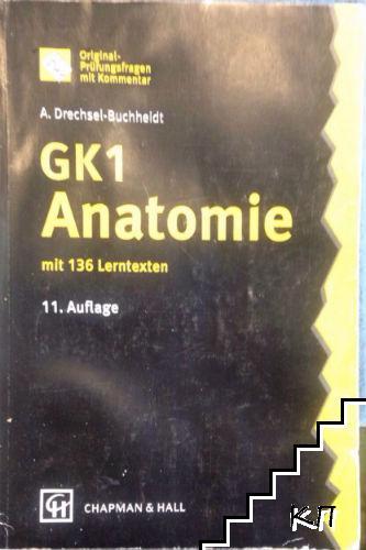 GK1 Anatomie