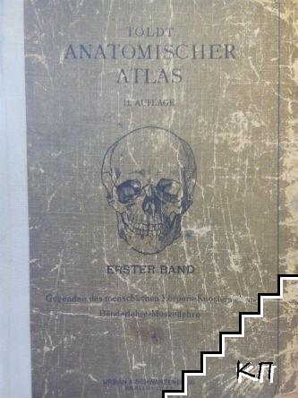 Anatomischer Atlas: für Studierende und Ärzte