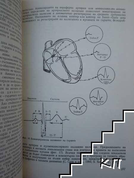 Основи на реанимацията и интензивната терапия (Допълнителна снимка 3)