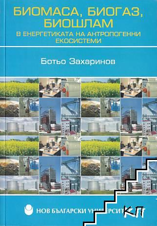 Биомаса, биогаз, биошлам в енергетиката на антропогенни екосистеми