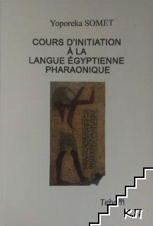Cours d'initiation a la langue egyptienne Pharaonique