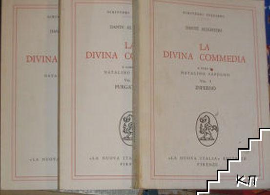 La Divina Commedia: A cura di Natalino Sapegno