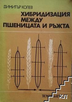 Хибридизация между пшеницата и ръжта