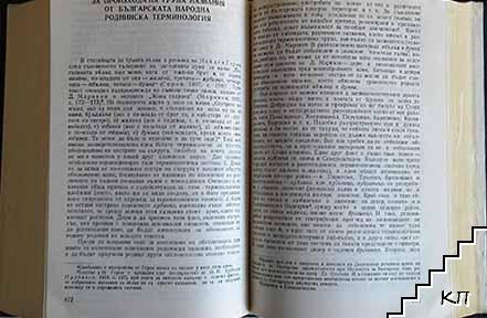 Избрани трудове по езикознание (Допълнителна снимка 2)