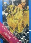 Жълтото куче