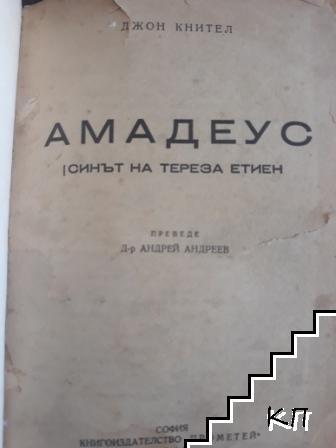 Амадеус - синът на Тереза Етиен