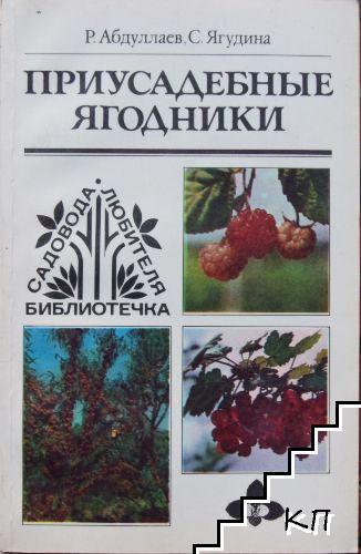Приусадебные ягодники