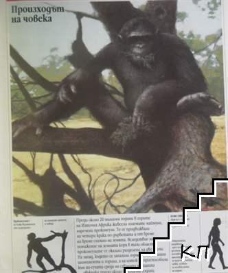 Енциклопедия Larousse. Бр. 5-6 / 1996 (Допълнителна снимка 2)