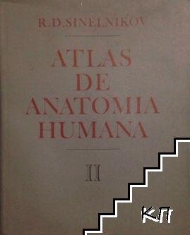 Atlas de anatomia humana. Tomo 2