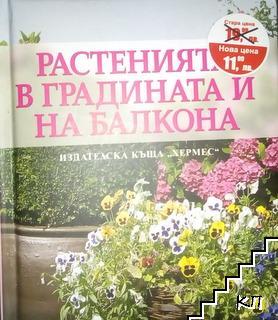 Растенията в градината и на балкона