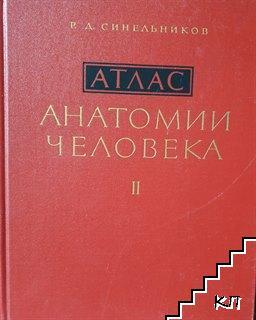Атлас анатомии человека. Том 2-3