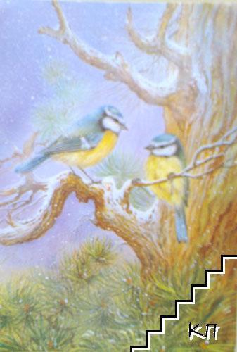 Птичета. Френска картичка