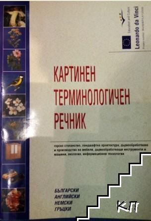 Картинен терминологичен речник