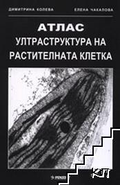 Ултраструктура на растителната клетка