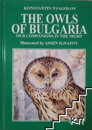 The Owls of Bulgaria