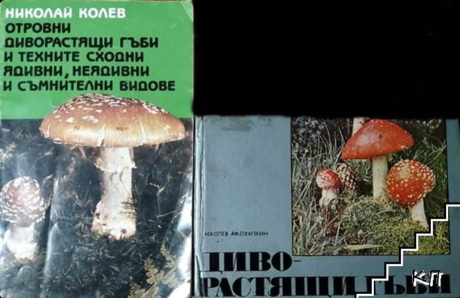 Отровни диворастящи гъби и техните сходни ядивни, неядивни и съмнителни видове / Диворастящи гъби