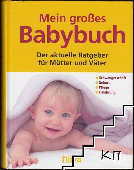 Mein großes Babybuch - Der aktuelle Ratgeber für Mütter und Väter