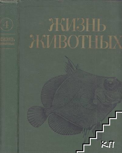 Жизнь животных в семи томах. Том 4: Ланцетники, круглоротые, хрящевые рыбы, костные рыбы