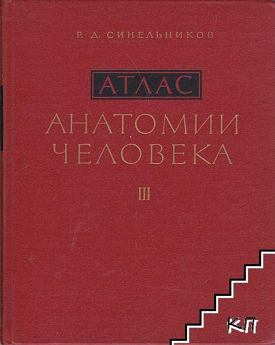 Атлас анатомии человека в трех томах. Том 3