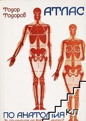 Атлас по анатомия