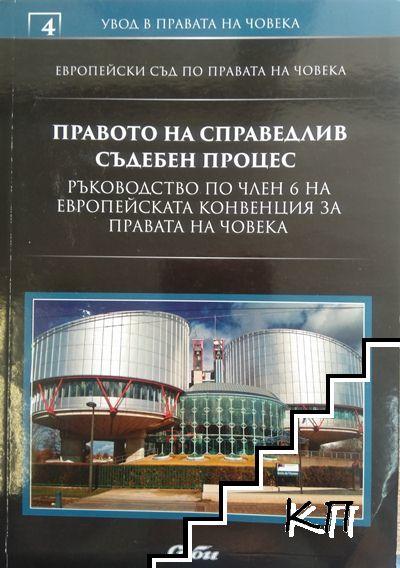 Европейски съд по правата на човека: Правото на справедлив съдебен процес