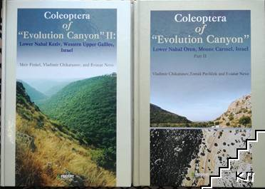 "Coleoptera of ""Evolution Canyon"" II / Coleoptera of ""Evolution Canyon"". Part 2"
