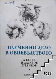 Племенно дело в овцевъдството