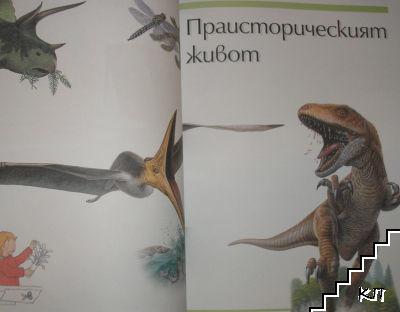Голяма детска енциклопедия (Допълнителна снимка 3)