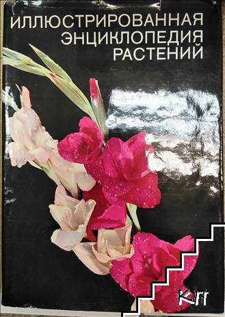 Илюстрированная энциклопедия растений