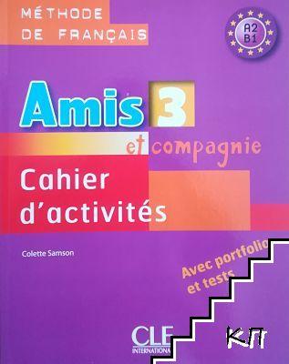 Amis et compagnie 3. Niveau A2. B1. Cahier d'activites