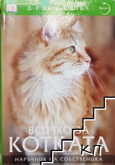 Всичко за котката